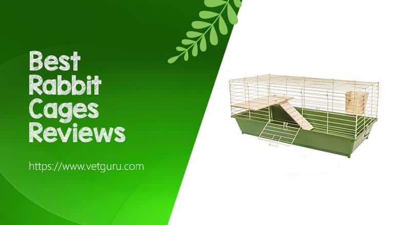 Best Rabbit Cages